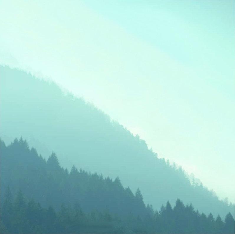 Green Gradient Forest.jpg