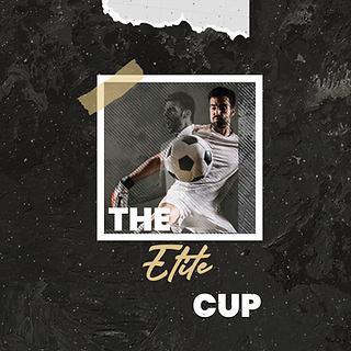 Elite Cup.png