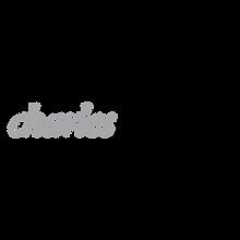 charles-schwab-2-logo-png-transparent.pn
