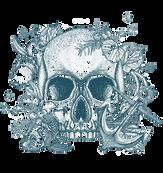 Broken Bones skull.png