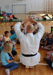 predstavitve_OÅ_slikca_karate.jpg