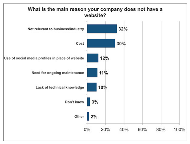 Chart outlining the main reasons why business owners do not have websites