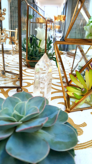 Succulent and Crystal Detail.jpg