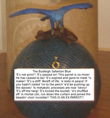 The Blue Parrot - Copy.jpg