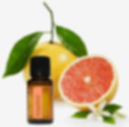 grapefruit 2.jpg