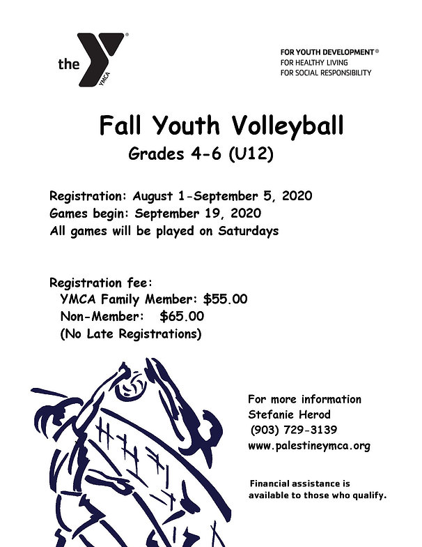 2020 Volleyball Flier Fall Youth Updated