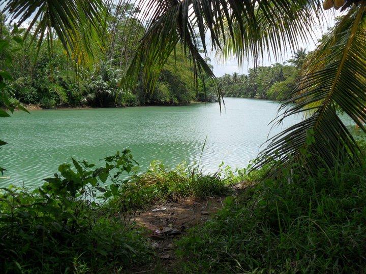 Batukaras green river