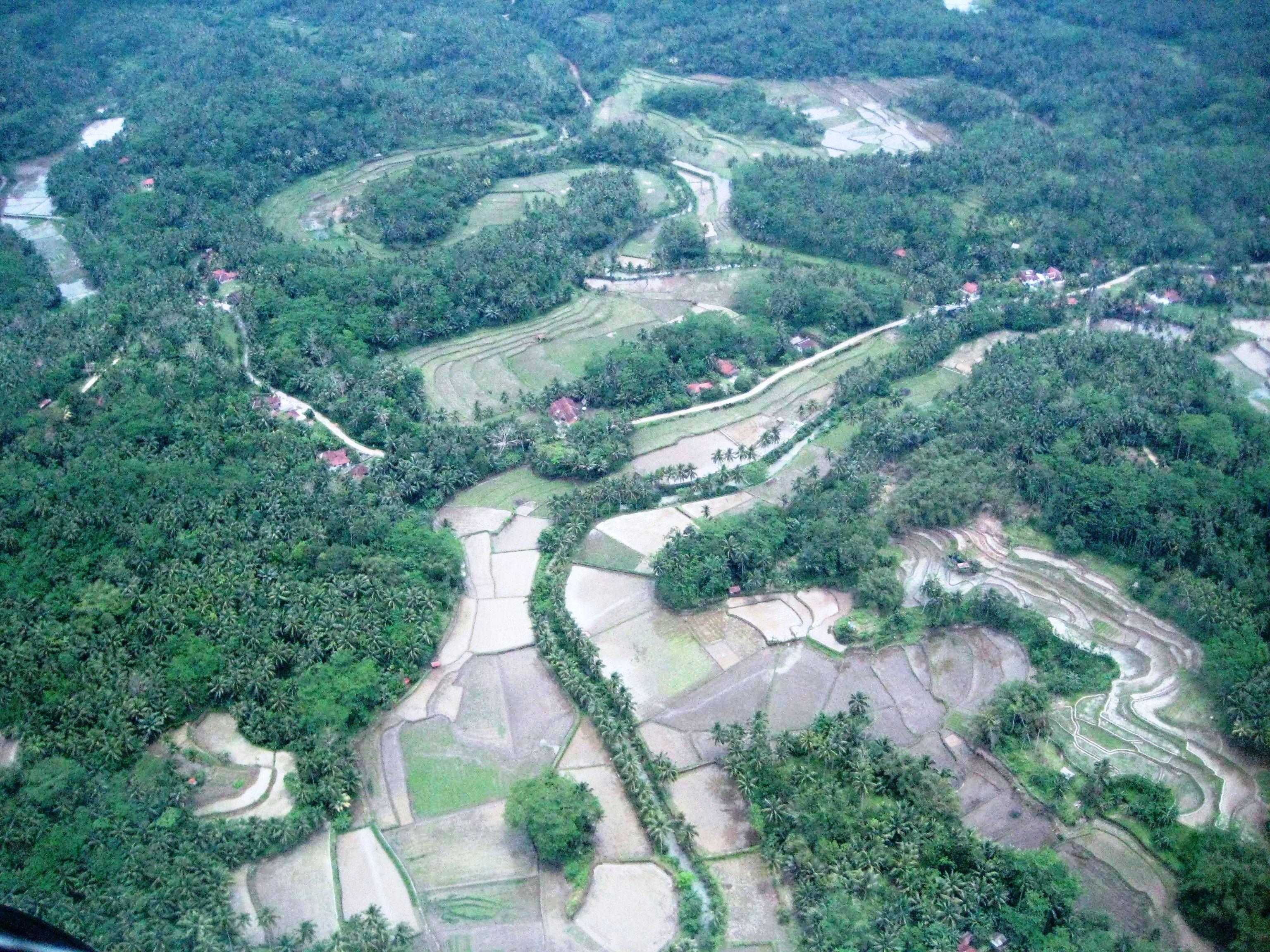 Batu Karas Rice fields