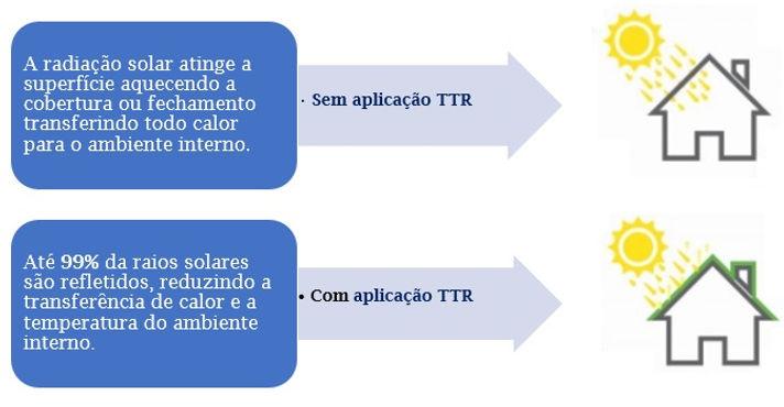 TTR.jpg
