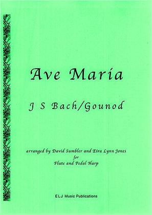 BACH/GOUNOD ~ Ave Maria ~ Flute & Harp