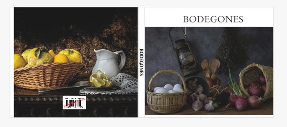 Bodegones Libro.jpg