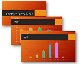 Employee Report example