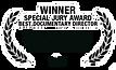 Los Angeles Film Festival-laurel-winner.