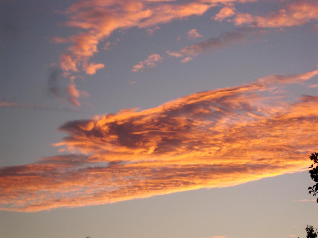 Sunset Cloud Dragon