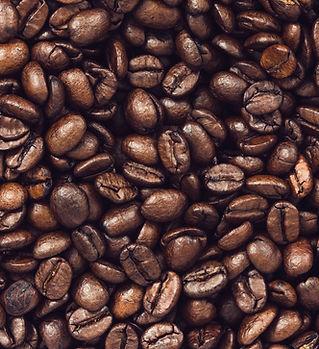Coffee Beans - Snark Coffee