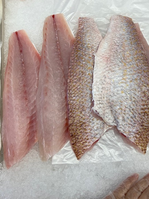 Goldband Snapper - Skin On Fillets (1kg)