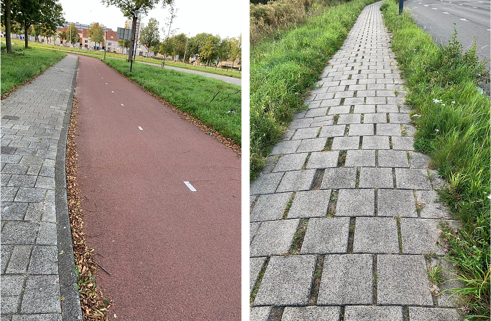 Bike lane or obstacle run? Never stop playing!