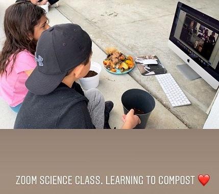 zoom pics (2).jpg