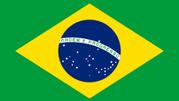 Check Brasil