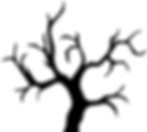 Arbol Seco Arizona