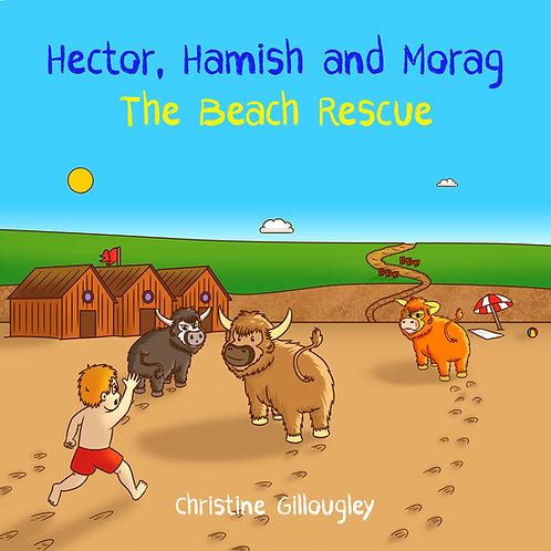 The Beach Rescue (Hardback)