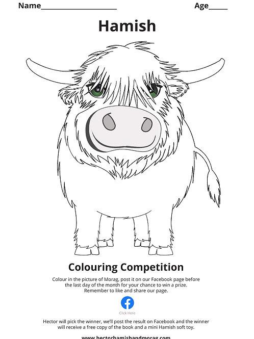 Hamish Colouring Page