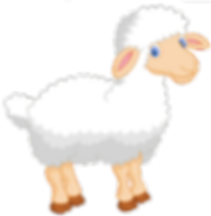 sheep..png