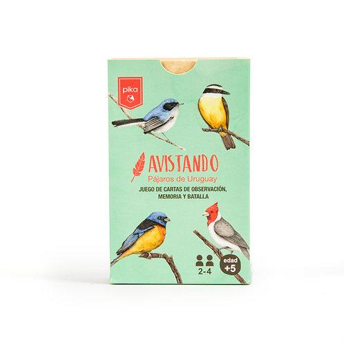 Avistando pájaros del Uruguay