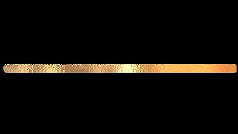 slim gold line.png
