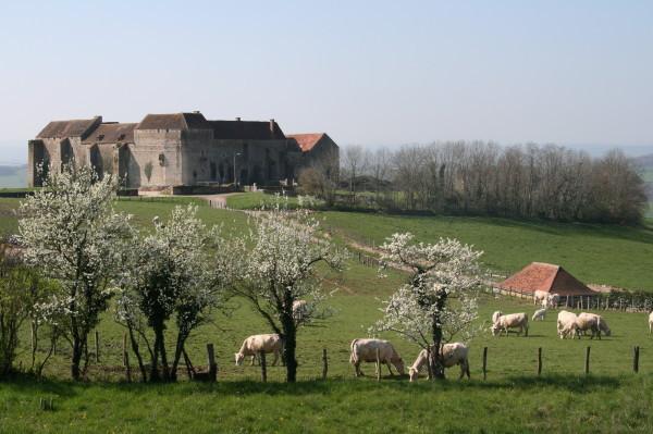 Château de Pisy