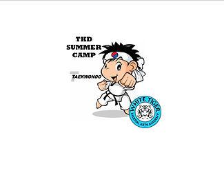 tkd summer camp.jpg