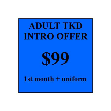 Adult Combatives Intro Offer