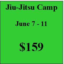 Jiu-Jitsu Summer Camp 1