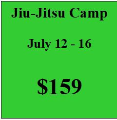 Jiu-Jitsu Summer Camp 2