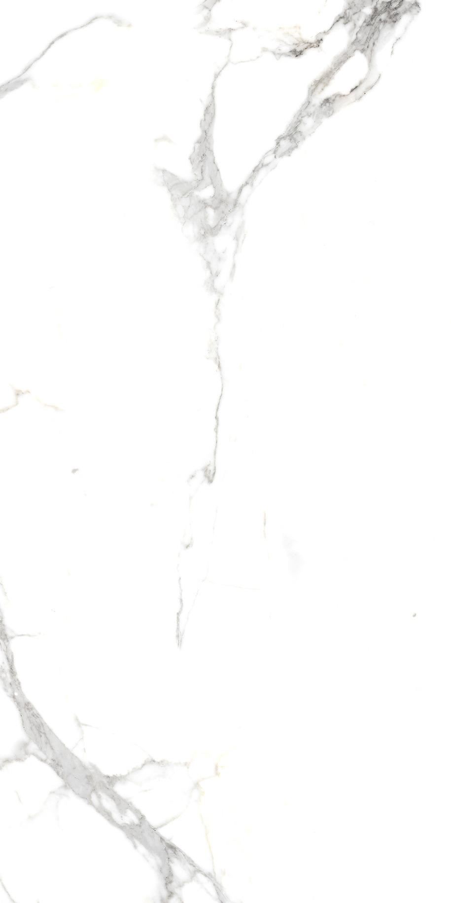 T77265