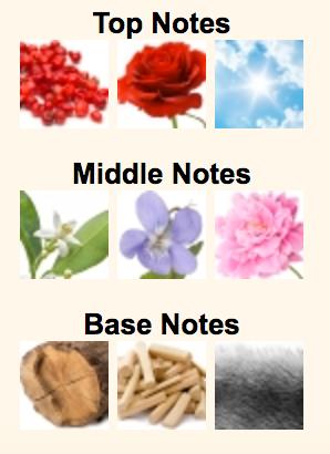 Notes Breakdown in Blanche by Byredo