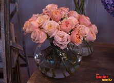 Flowers in Vase Photography in Stoke On Trent