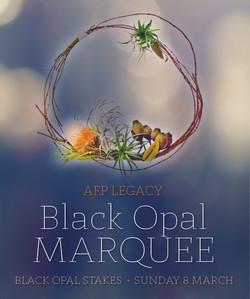 Black Opal Marquee