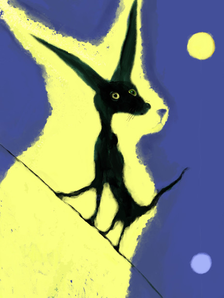 New drawing added: Cat on a Wire