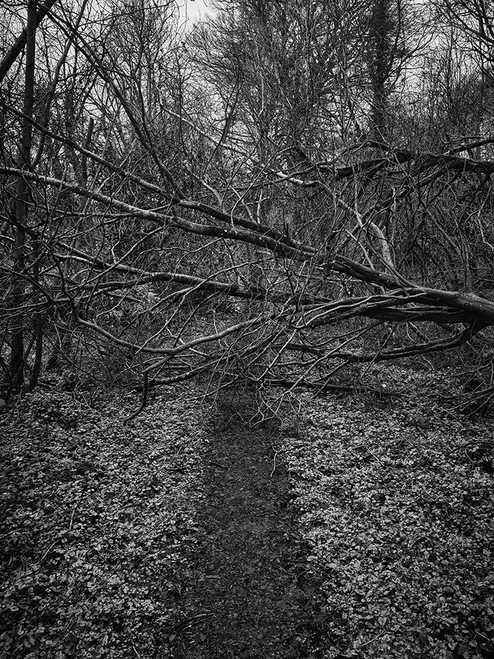Blocked Pathway 1