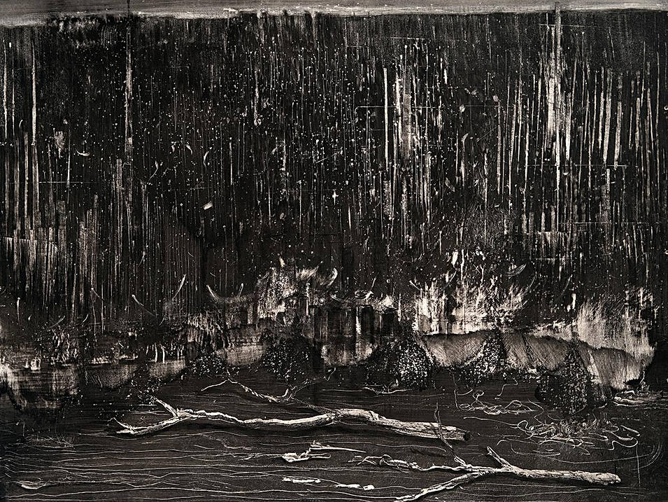 Driftwood in Cerebrospinal Fluid