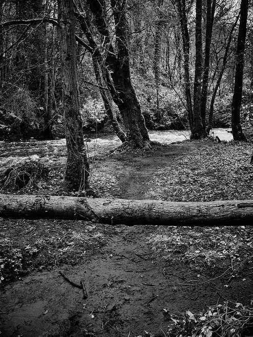Blocked Pathway 5