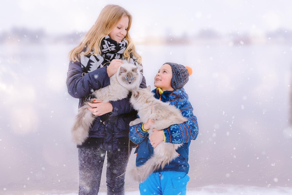 Snowdogs-1-4f (Copy)