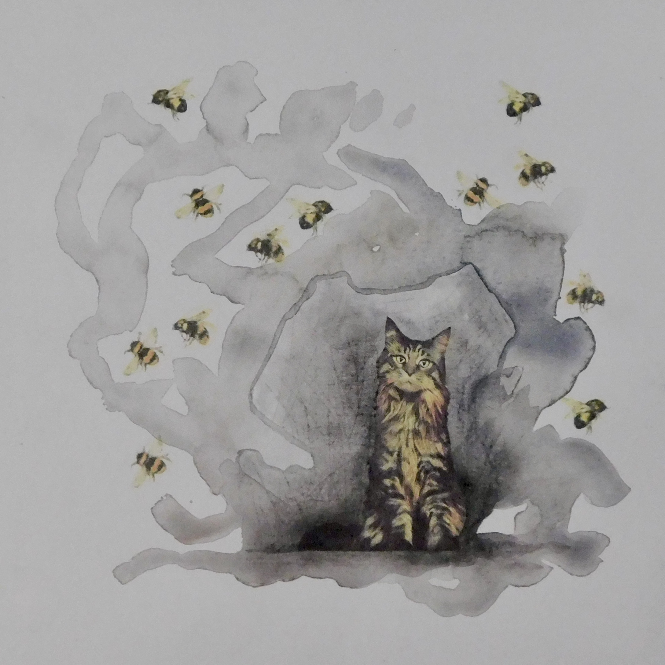 The Cat In The Cave