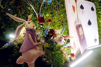 愛麗絲夢遊仙境21.jpg