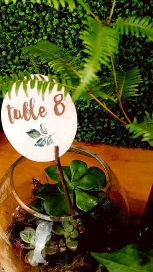 Nature050.jpg
