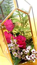 garden47.jpg