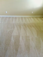 Bradenton Sarasota Carpet Cleaning