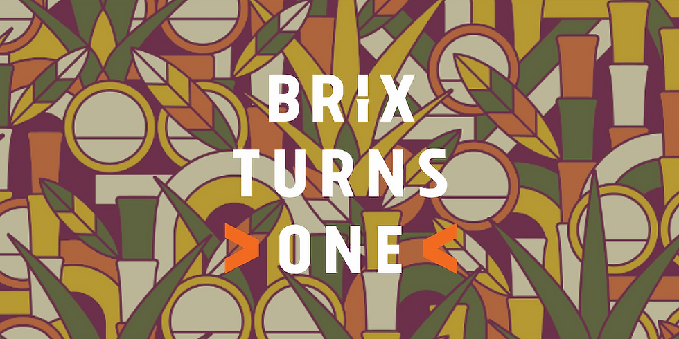 Brix 1st Birthday!