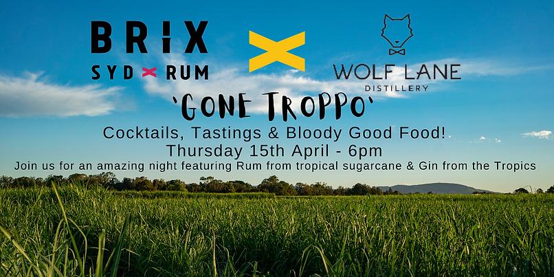 Rum Tasting Banner (1).png